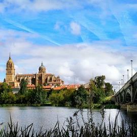 Guided Walking Tour of Salamanca