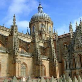 Guided Tour of Salamanca Cathedral